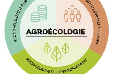 L'agroécologie qu'est ce que c'est ?